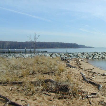 study of the breakwater at Rogue's Harbor Boating Facility in Elk Neck State Park